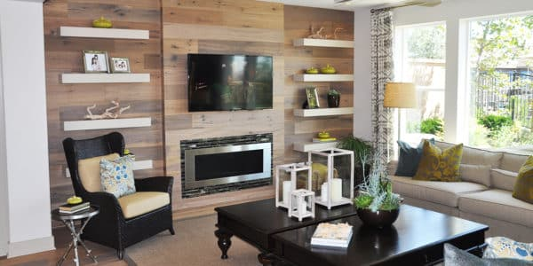 aliso-viejo-contemporary-new-home-2