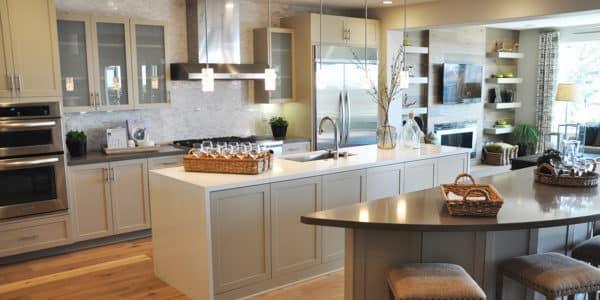 aliso-viejo-contemporary-new-home-3